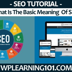 What Is The Basic Meaning Of SEO (Step By Step Tutorial)
