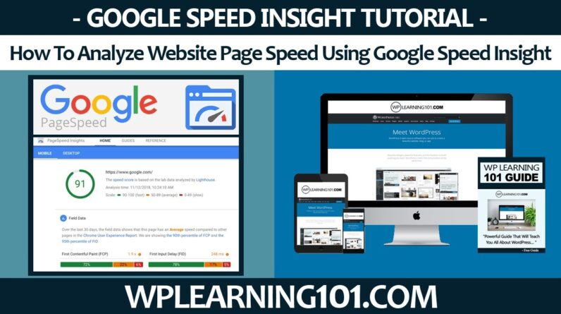 How To Analyze Website Page Speed Using Google Speed Insight (Step-By-Step Tutorial)